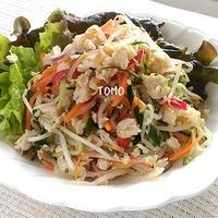 メインにも♪鶏ひき肉 de タイ風サラダ