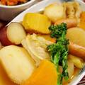■菜園発【簡単ポトフ】モランボンのポテトポトフスープで手間かけずに美味しく/その他副菜♪
