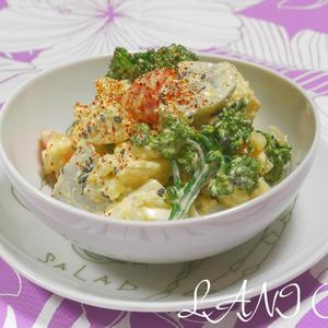 根菜とブロッコリーの海老そぼろタルタルサラダ