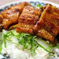 土用の丑の鰻丼と副菜ちらほら。家のマイクロトマト☆うれしいこと&副賞! by 杏さん