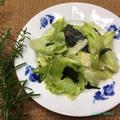 レタスと海苔のサラダ ~ぐんまクッキングアンバサダー~