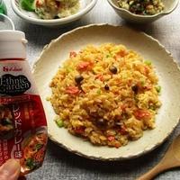 『ハウスエスニックガーデン クッキングペースト<レッドカレー味>』で炒飯もカレーも簡単なのにバッチリ美味しい!