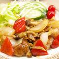 【和食】きょうの大皿?!「ガリバタチキン」&なすの焼き浸しで晩ごはん。