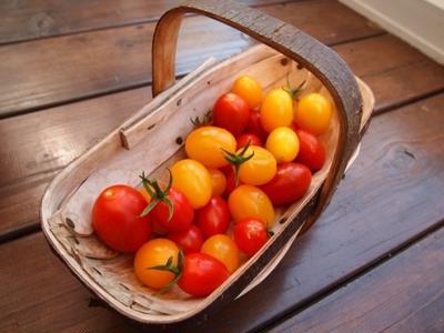 トマトとタコのマリネサラダのレシピ