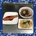 【献立16】鮭の照り焼き・里芋とイカの煮物・もやしのオイスターマヨ炒め