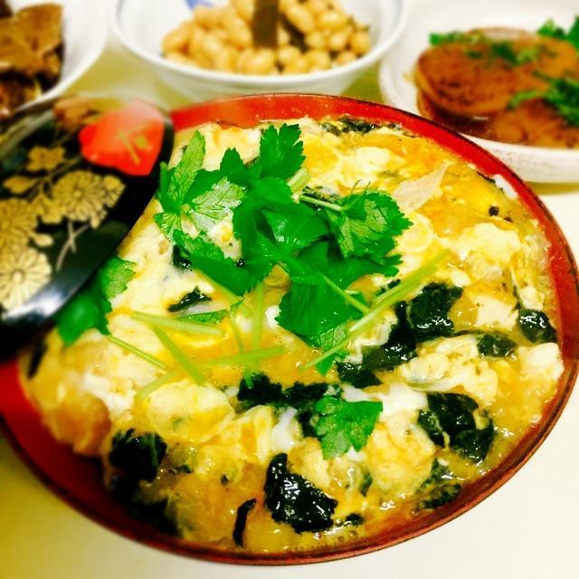 豆腐と焼き海苔の揚げ玉丼