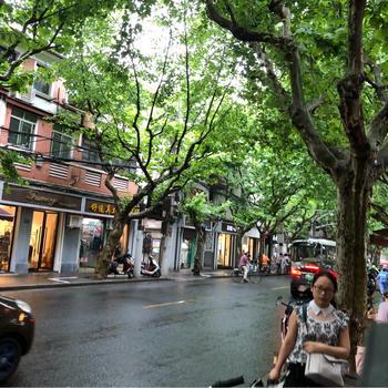 上海風景レポート