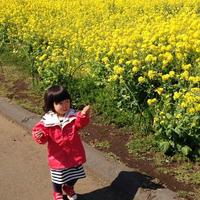 ソレイユの丘と横須賀野菜