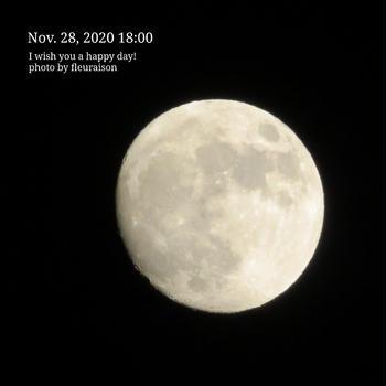 【食育日記】11/29No.1277♡具だくさんカレー♡今朝の筆文字No.808「漢学の力」