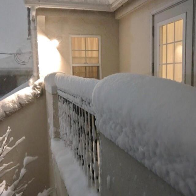 4年ぶりの大雪とLunch*