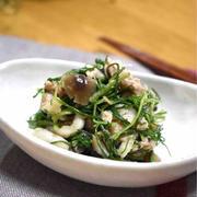 【おかひじきとツナの旨サラダ】#作り置き#簡単#副菜#お弁当おかず#骨作りにぴったり