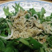 水菜のピリ辛しらすサラダ
