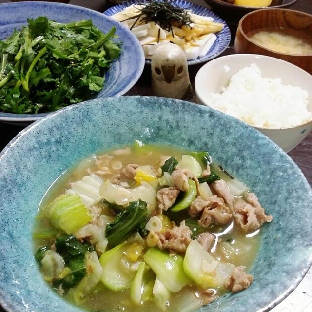 白菜と豚バラ塩餡掛け+チーズインコロッケ+ウソツキ娘再び。