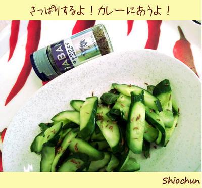 野菜は好きだから食べている!