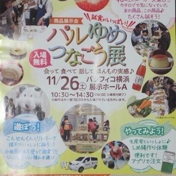 11/26(土)は【パルゆめつなごう展(2016年)】です!