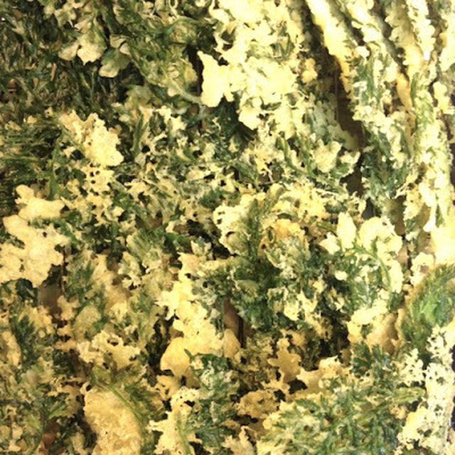 人参の葉のフリット