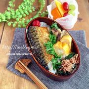 鯖の塩焼きとほうれん草おかか醤油の和弁当【本日のお弁当】