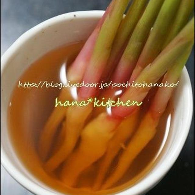 【簡単レシピ】はじかみ生姜の作り方。