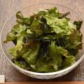 福岡県産 リーフレタスで和えるだけの簡単韓国風ピリ辛サラダ