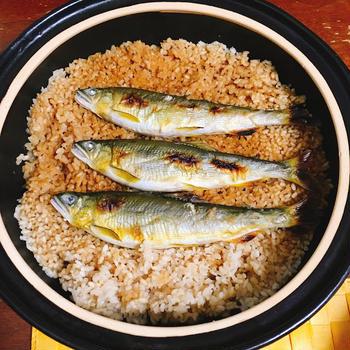 土鍋で炊く鮎ご飯