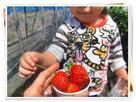 strawberry-macaronさん