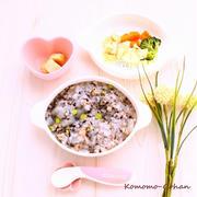 【離乳食メモ】 鉄分補給! まぐろとひじきのすりごま雑炊 と 豆腐ステーキ の献立。
