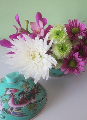 いわゆる仏花として花店でもよく見かける「アナスタシア」という大輪のマムも、鮮やかな色のマムや蘭とあわ...