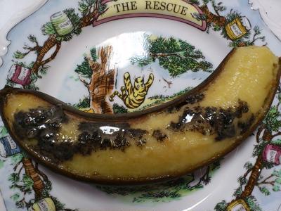 黒い焼きバナナ