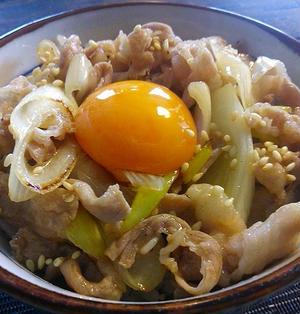 【再現レシピ】「伝説のすた丼」が簡単に作れて激旨だった
