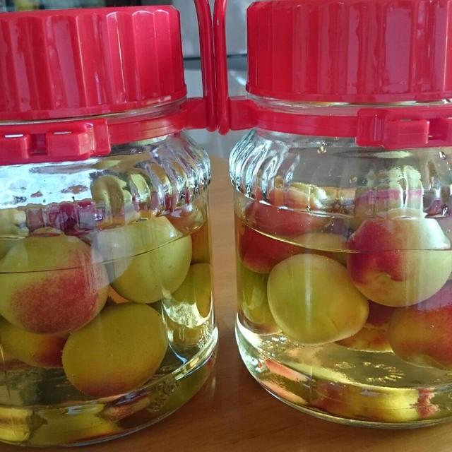 りんご酢梅サワー