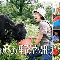 小谷あゆみの【畑の世界ふしぎ発見】 えっ!あの野菜がシリーズ第2弾!こーんな大きな葉っぱに覆