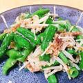 レンチンだけでできる!「いんげんとえのきのめんつゆ和え」レシピ、簡単副菜。