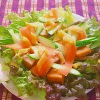 カリカリ厚揚げとシャキシャキ野菜のサラダ!
