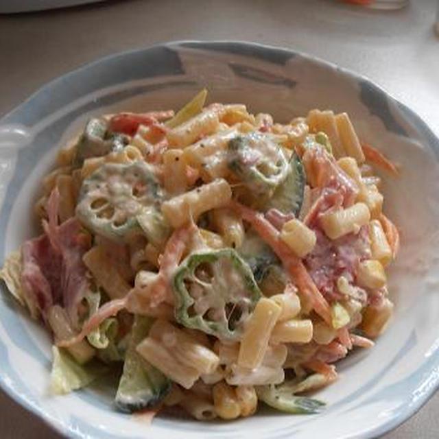 忙しい朝に簡単につくれるヘルシーランチ♪ たっぷり野菜とマカロニサラダのランチ