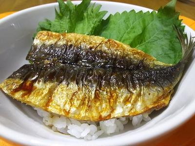 イワシのカレー蒲焼き丼(*^-^*)