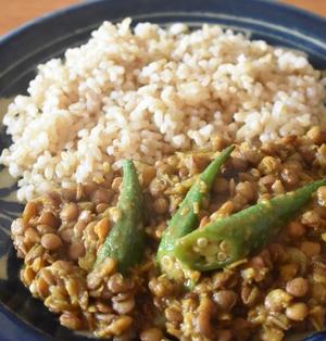 やさしい味のスパイスカレー!!レンズ豆とオクラでつくるヘルシーな豆カレーのレシピ