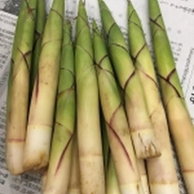 姫竹でお煮しめ作りました!