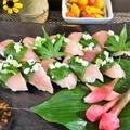 ■握り寿司と添え付けおつまみ3品【ビンチョウ鮪の大葉巻き寿司】