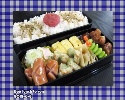 ★6月8日のお弁当 -串なし焼き鶏-