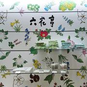 「おやつ屋さん」シーフォームケーキ /六花亭