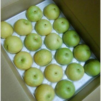 ●梨の選び方:あなたは青梨がお好き?それとも赤梨がお好き??