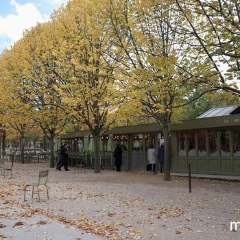 11月のパリ、美しき秋のリュクサンブール公園