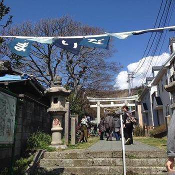 葉山までいなマーケット 〜2014年 春〜