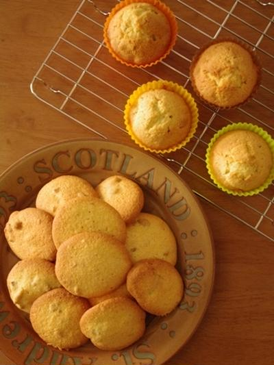 ふわサクの軽いナッツクッキーとカップケーキ☆アレンジパウンドケーキ
