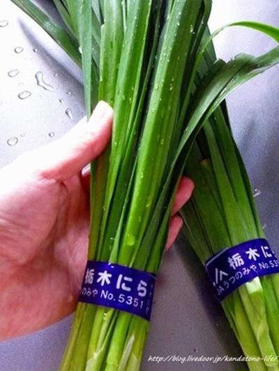 とちぎのニラと日本酒のコラボ@とちぎ野菜サポーター