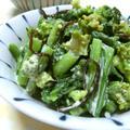 安定の美味しさ♪ 菜の花の塩昆布入り塩麹マヨ和え