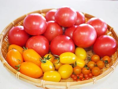 【御礼】オレンジキッチン「世界各国のトマト料理を味わう」編