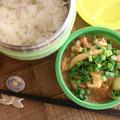 【お弁当】【簡単】【地味弁】フライパンでOK!麺つゆで親子丼弁当♪