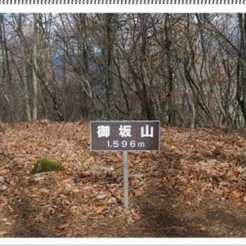 御坂山1596m