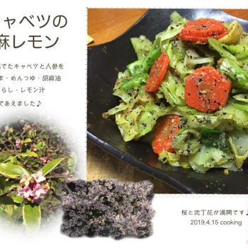 春キャベツの胡麻レモン 料理レシピ